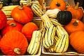 Squash And Pumpkins (10168767494).jpg