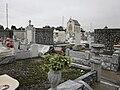 St Roch Cemetery to Chapel.JPG