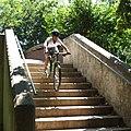 Stairs (33611805).jpeg