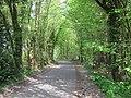 Stalisfield Road in East Wood - geograph.org.uk - 1269045.jpg
