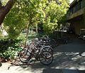 Stanford University March 2012 22.jpg