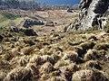 Steep hillside above Loch Maree - geograph.org.uk - 687846.jpg