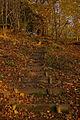 Steep path - geograph.org.uk - 621072.jpg