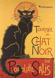 Réel jeune chatte noire