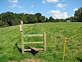 Stile on the Gloucestershire Way - geograph.org.uk - 522499.jpg