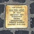 Stolperstein Unter den Linden 6 (Mitte) Walter Herz.jpg