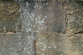 Masons mark symbol often found on dressed stone in buildings