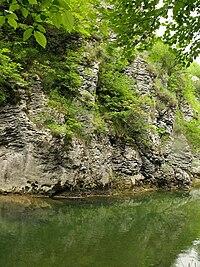 Stream in Lucretili reserve.JPG