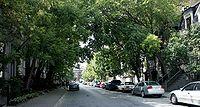 Street of the Ghetto McGill, Montreal 2005-08-30.jpg