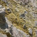Sulfur field on the volcanic island Nea Kameni in Greece.jpg