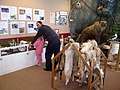 Summit Nature Center is open weekends. (8388551442).jpg
