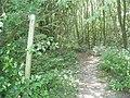 Sussex Border Path at Ketche's Lane - geograph.org.uk - 28532.jpg