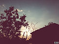 Svln svln4821 ordubad me best top photography resimleri sekilleri photos creative profil maraqli sekil resim fotograflari fotograf ornek resimler (300).JPG