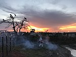 Swingfogging in Bentiu. MOD 45163482.jpg