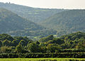 Tamar valley from Luscombedown 1.jpg