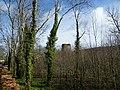 Templemichael Castle - geograph.org.uk - 2343889.jpg