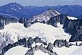 Tepeh Towers, Austera Towers, McAllister Glacier.jpg