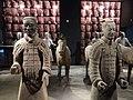 Terracotta army museum.jpg