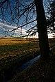 Texel - Okusweg - View South I.jpg