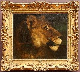Tête de lionne