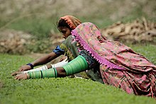Thari women working on fields