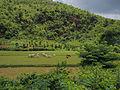 Thazi to Shwenyaung and Inle Lake (15129653841).jpg