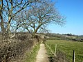 The Cotswold Way above Kelston - geograph.org.uk - 696404.jpg