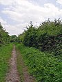 The Hudson Way near Wold Farm - geograph.org.uk - 826285.jpg