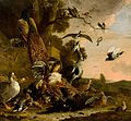 The Raven Robbed of the Feathers He Wore to Adorn Himself by Melchior d'Hondecoeter Mauritshuis 59.jpg