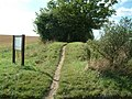 The Ridgeway Path - geograph.org.uk - 51502.jpg
