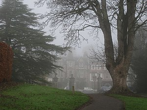 English: The Woodside Hotel and the big tree