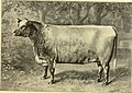 The breeds of live stock, and the principles of heredity (1887) (14778855994).jpg