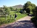 The lane to Coatsike Farm, Dufton - geograph.org.uk - 1900664.jpg