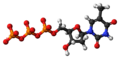 Thymidine triphosphate anion 3D ball.png