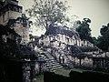 Tikal Central Acropolis (9791233223).jpg