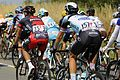 Tour de France 2013 - Étape 12 - Fougères 09 - Amaël Moinard + Niki Terpstra.JPG
