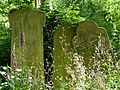 Tower Hamlets Cemetery, June 2015 15.jpg