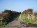 Track - geograph.org.uk - 598293.jpg