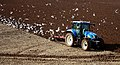 Tractor and Gulls - geograph.org.uk - 1746638.jpg
