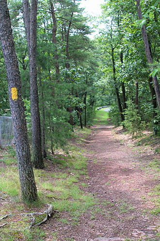 Shikellamy State Park - Deer Trail in Shikellamy State Park