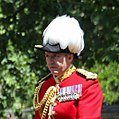 Trooping the Colour 2018 (04) (cropped) - Ben Bathurst.jpg