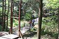Trough Creek State Park - panoramio (7).jpg