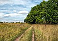 Tula region Near Shchyokino IMG 5148 1280.jpg