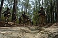 US Navy 060405-N-4097B-028 Sailors patrol through the woods during a simulated Improvised Explosive Device (IED) awareness exercise as part of the Navy's Individual Augmentee Combat Training course at Fort Jackson, S.C.jpg