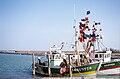 Un chalutier de pêche côtière (10).jpg