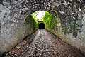 Upper and lower tunnels - geograph.org.uk - 1417781.jpg