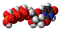 Uridine triphosphate 3D spacefill.png