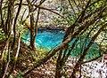 Val de Cusance. Source bleue (5).jpg
