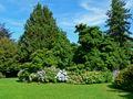 VanDusen Botanical Garden 4.jpg