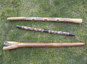 English: Various types of Didgeridoo. Top: A t...